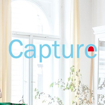CAPTURE - AVS Electronics