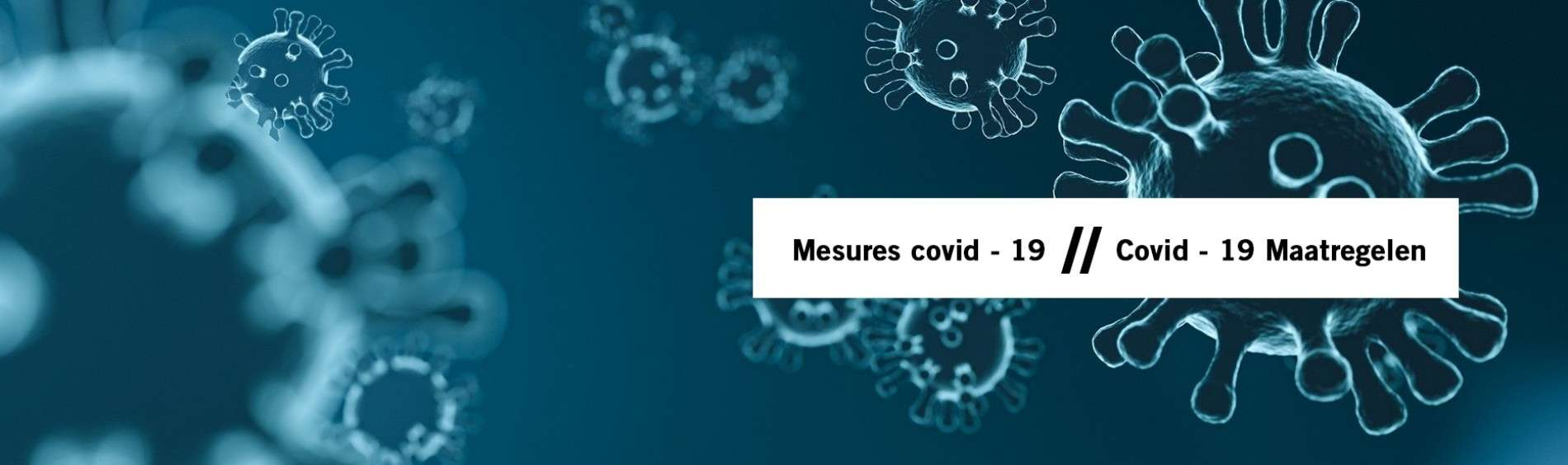 Covid - 19 Maatregelen